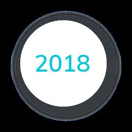 2018 Icon